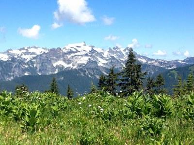 Backpack - Benchmark Mountain via West Cady Ridge
