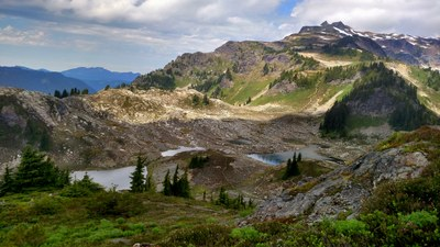 Backpack - Yellow Aster Butte