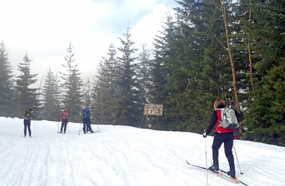 Cross-country Ski - Stampede Pass