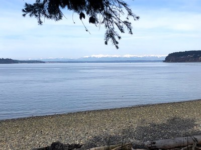 Day Hike - Chambers Bay Golf Course Trail
