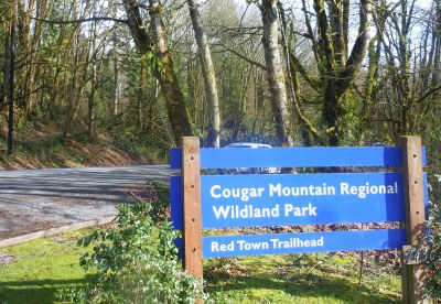 Day Hike - Cougar Mountain: Red Town Trailhead