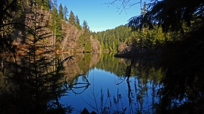 Day Hike - Lake Sylvia State Park/Montesano City Forest