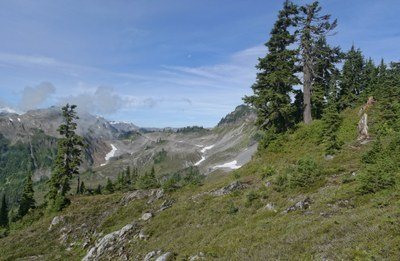 Day Hike - Ptarmigan Ridge