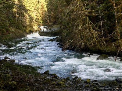 Day Hike - Shady Lane & Staircase Rapids