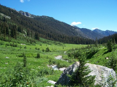 Day Hike - Spider Meadows