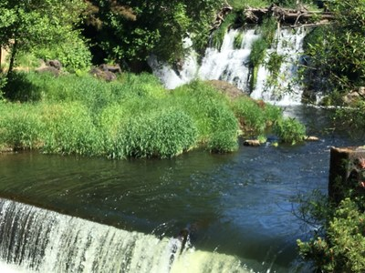 Day Hike - Tumwater Falls Park