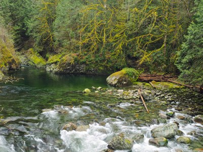 Day Hike - Twin Falls (Olallie State Park)