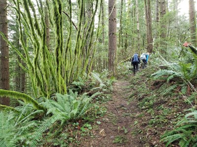 Day Hike - West Tiger Mountain No. 1