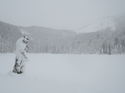 Intermediate Snowshoe - Olallie Lake