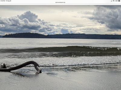 Sea Kayak - Point No Point to Hood Canal