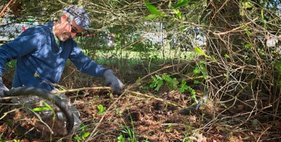 Stewardship - McIntyre Conservation Easement (Olympia)