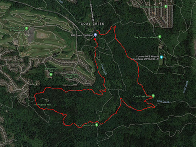 Frontcountry Trail Run - Cougar Mountain Loop