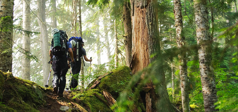 EXPLORE *new places in the outdoors* — The Mountaineers