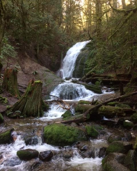 Cougar Falls