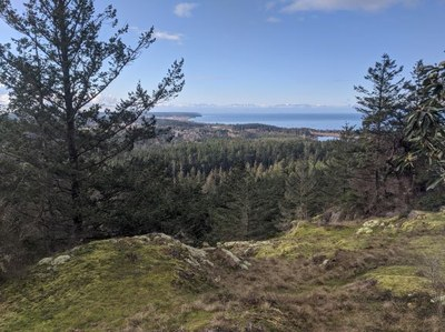 View of Olympic Mountain Range from Goose Rock taken by Joshua Stein