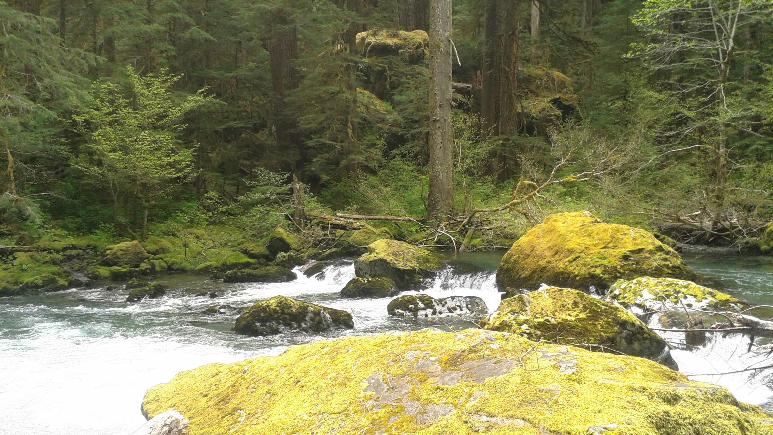 Duckabush River — The Mountaineers