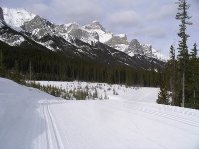 Nordic Ski the Canadian Rockies of Lake Louise and Canmore