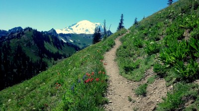 Pacific Crest Trail:  Chinook Pass to Norse Peak