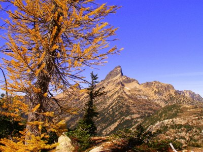 Pacific Crest Trail: Harts Pass to Rainy Pass