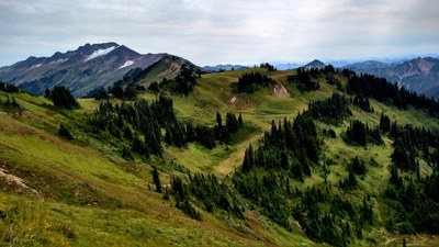 Pacific Crest Trail: Suiattle River to Red Pass & White Pass