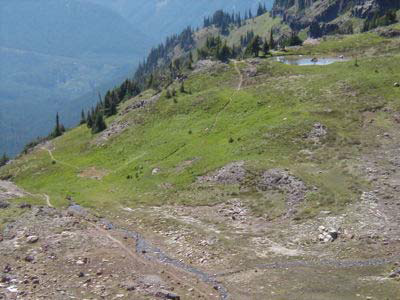 Pacific Crest Trail: White Pass to Walupt Lake