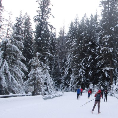 Methow Valley Winter Trails