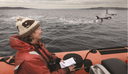 Bookmarks | Orca: Shared Waters, Shared Home