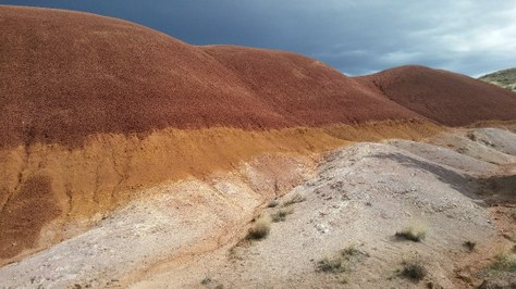 5a76fc45476f Did You Know  The John Day Fossil Beds National Monument — The ...