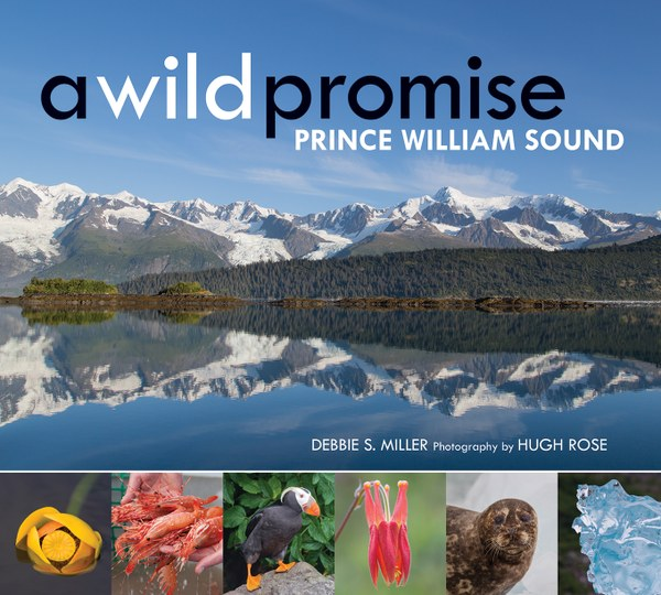 a_wild_promise_final_cover_WEB_S.jpg