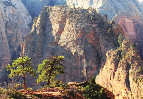 Angels Landing viewed from the West Rim Trail above Scout Landing p 84.jpg