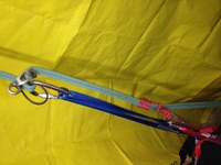 Clip the carabiner back to your belay loop
