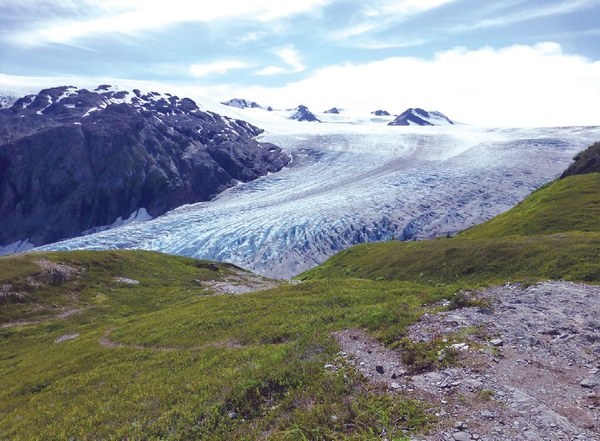 Harding Icefield 'Exit Glacier spills from Harding Icefield, which is just visible on the horizon'.JPG