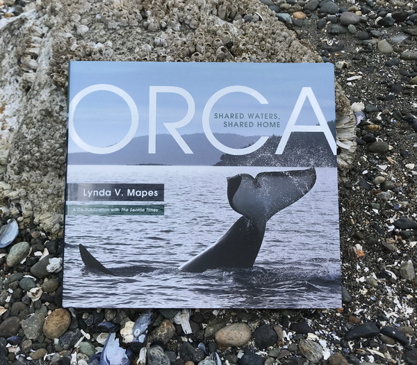 orca-cover.png