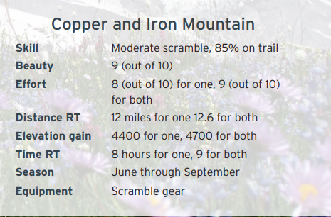 Secret_Rainier_Copper_and_Iron_Mountain.png