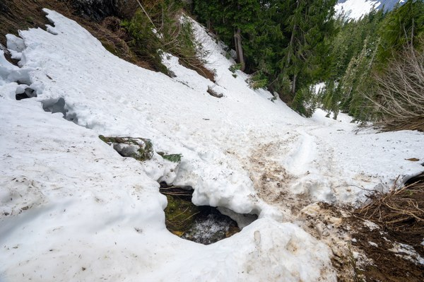 snow bridge with glissade path, photo cred to Nate Brown.jpg