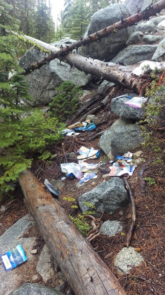 Wildlife got into a garbage bag near Colchuck. Photo by Colin Foster..jpg