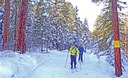 Join Us for Winter Trails Weekend in the Methow - Jan 3-6, 2020