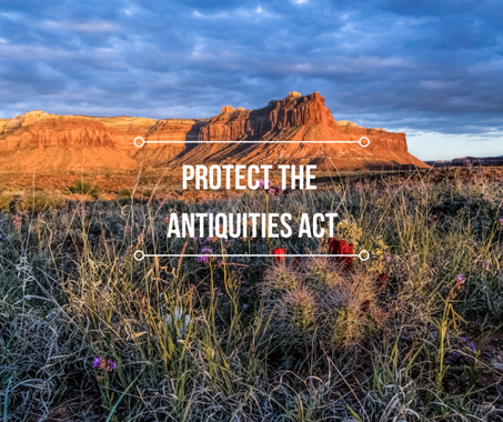 Conservation & Advocacy — The Mountaineers