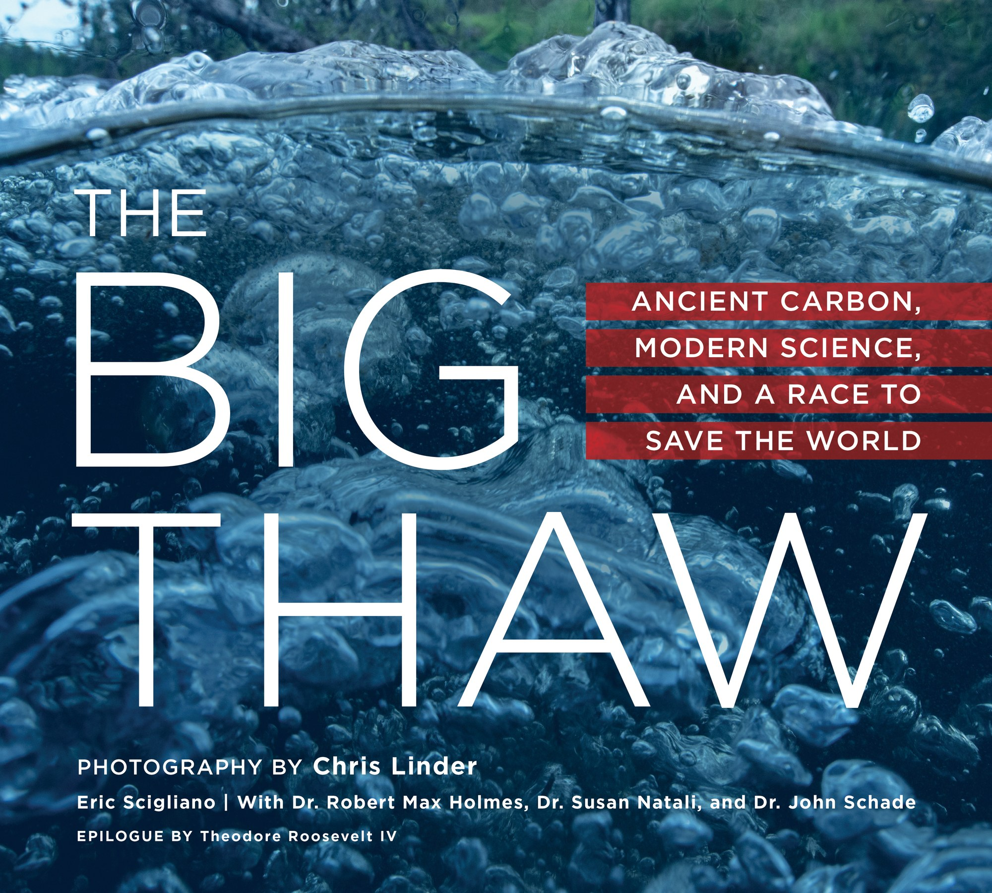 Image result for the big thaw