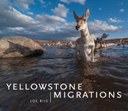 YellowstoneMigrations_Final_WEB.jpg