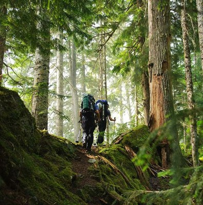 2 hikers mossey forest.jpg