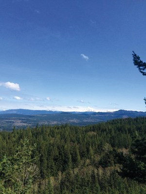 Intro to Trail Running: Backcountry Field Trip - Chuckanut Ridge