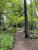 Intro to Frontcountry Trail Running - Lake to Lake Trail and Greenway