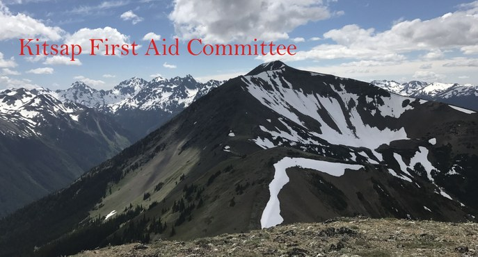 Kitsap First Aid Committee