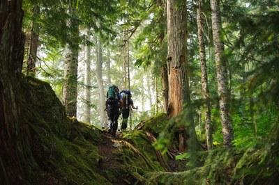 Essentials of Backpacking - Olympia - 2019