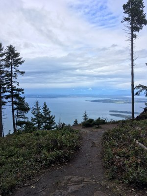 CHS 1 Hike - Turtleback Mountain Preserve: Turtlehead Summit