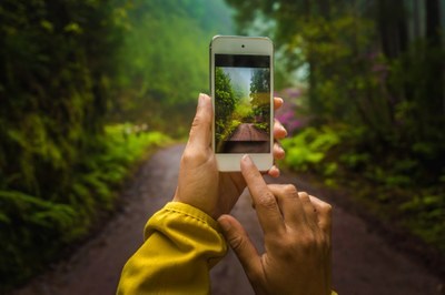 Phone It In Workshop & Photo Walk - How to Become a Better Photographer by Using Your Phone Camera 2019