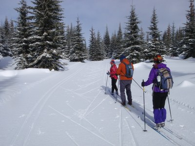 Introduction to Cross-country Skiing - Seattle - 2015