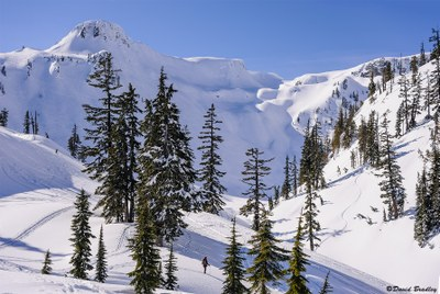 Basic Snowshoeing Course - Seattle - 2017