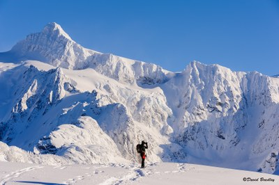Backcountry Snowshoeing Skills Course - Seattle - 2017